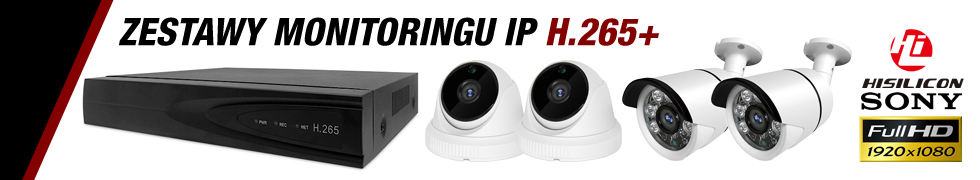 MONITOR. IP FULLHD H.265+