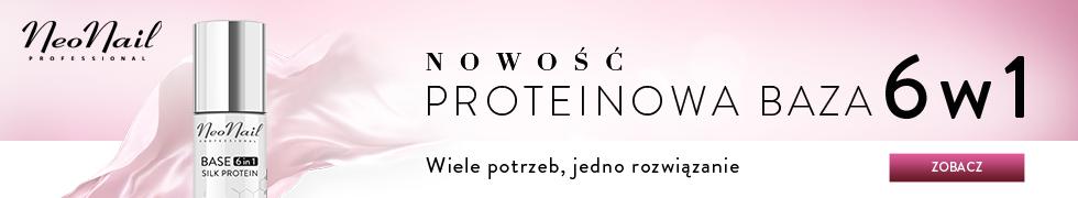 Nowość - Baza PROTEINOWA