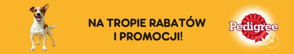 Rabaty i Promocje