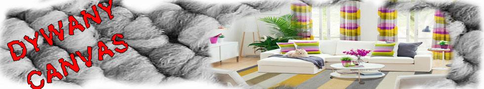 Przedmioty Użytkownika Dywanyzagrosze Allegropl