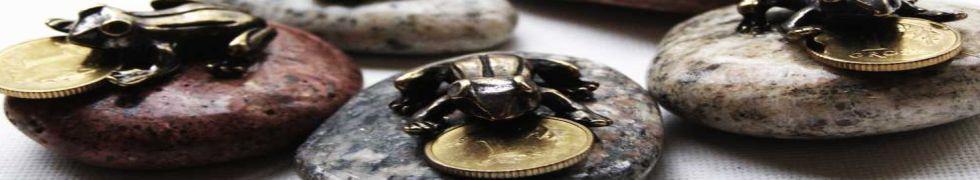żabka na kamieniu
