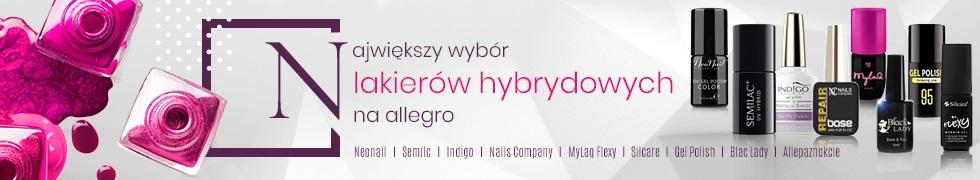 Lakiery hybrydowe